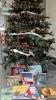Sapin de Noël au pied duquel sont déposés divers albums de jeunesse empruntables dans les bibliothèques