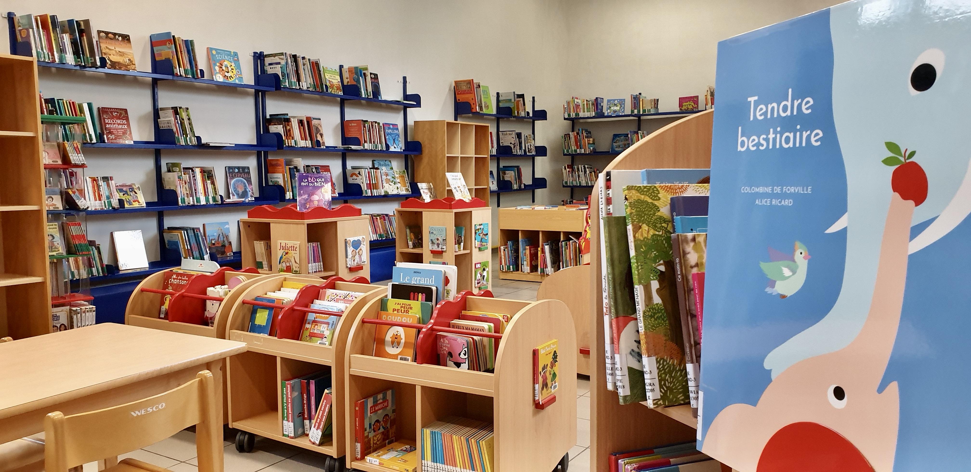 Rayonnages de la bibliothèque de Monceau-sur-Sambre
