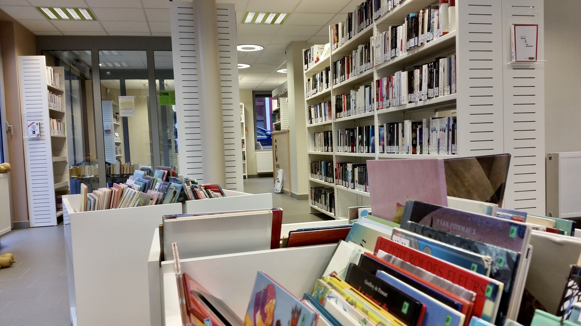 Rayonnages de la bibliothèque de Roux